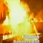 bonanzarad / fischmob