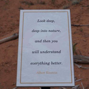 Quote Albert Einstein