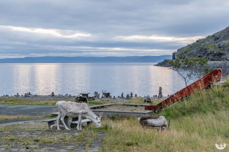 norwegen-20160901-porsangerfjord-0329-mandy-raasch-770x513