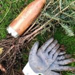 Hej, lass ma Bäume pflanzen – Root Camp in Remscheid